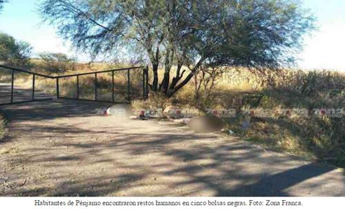 Seis hombres son asesinados y uno descuartizado en las últimas 12 horas en Guanajuato