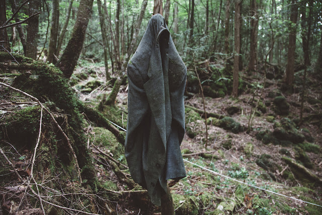 El bosque esta posiblemente embrujado