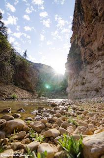 Rio Valdearazo entre los cañones