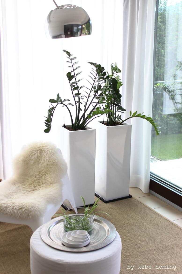 Neue Pflanzkübel by Vivanno, Pflanzenliebe Zamioculca, minimalistisches Design, Living, Interior, Arco Lampe, whitelove auf dem Südtiroler Food- und Lifestyleblog kebo homing