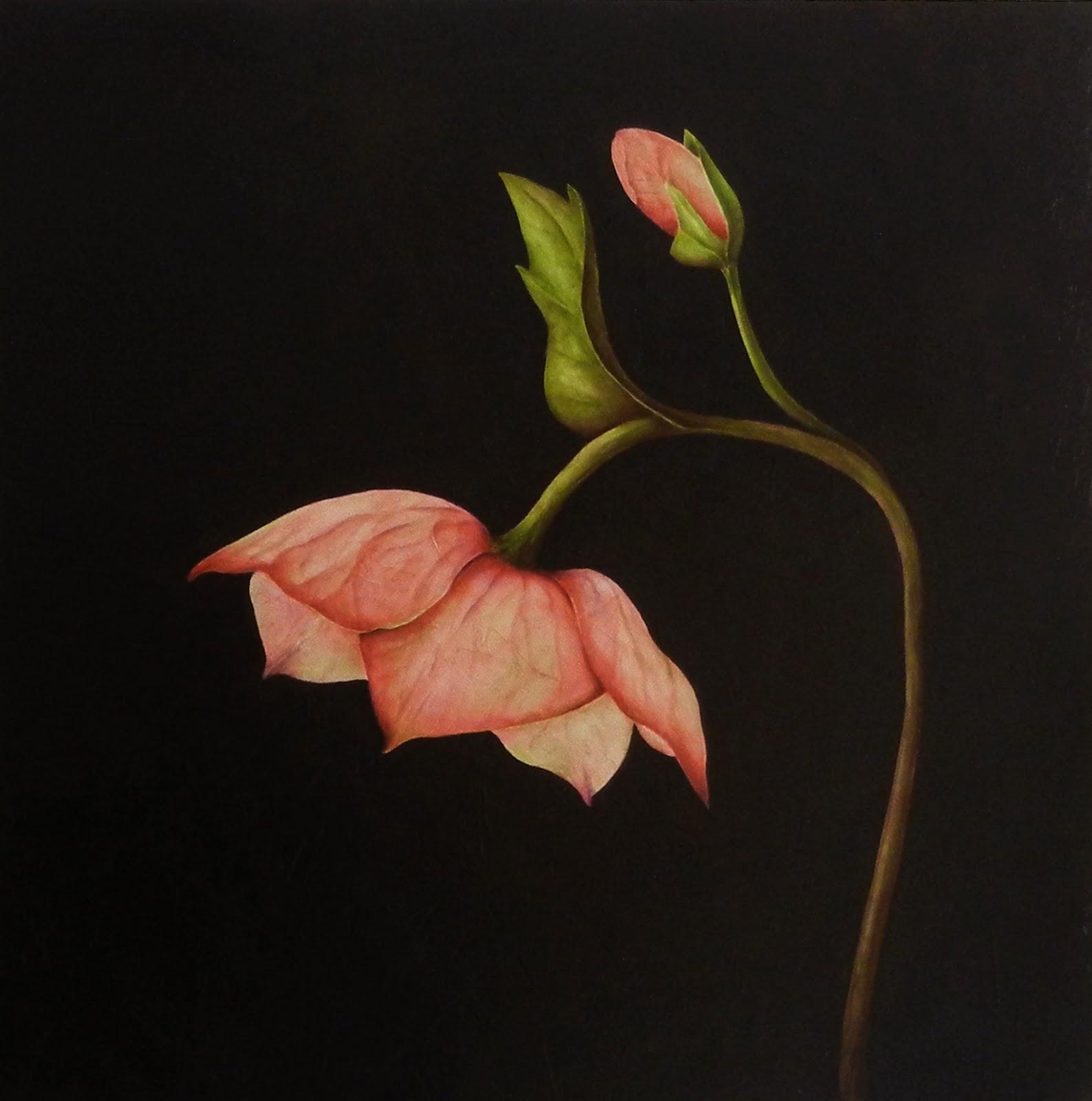 Beyond Words: the Symbolic Language of Plants: Eva-Maria Ruhl - photo#43