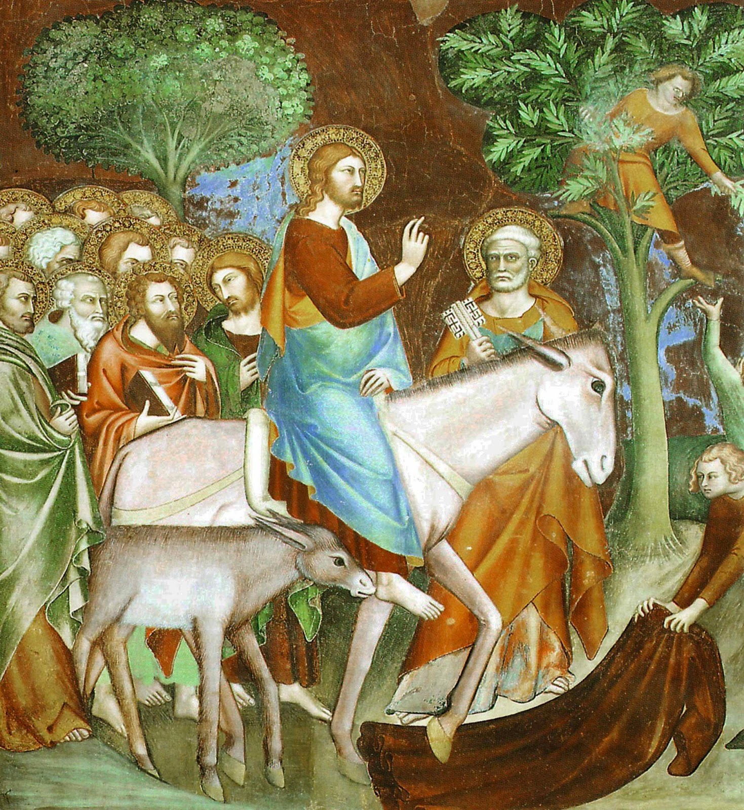 The RAsburry Patch: Homily for Palm Sunday - 2018