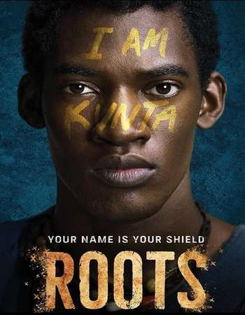 Poster Of Roots Part 1 2016 Dual Audio 300MB BRRip 480p ESubs Free Download Watch Online downloadhub.net