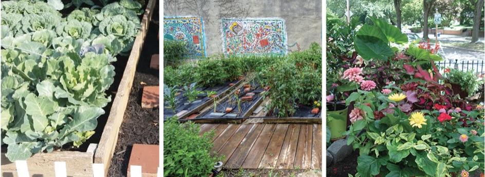 PA Environment Digest Blog