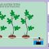 Mengaplikasikan Hidroponik Sistem Tetes pada Kebun Tin Konvensional