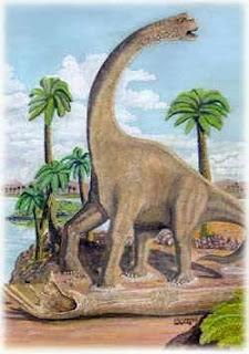 Foto Andesaurus delgadoi