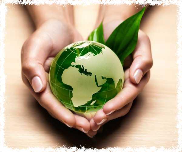 بحث حول المنتج الأخضر المنتج المستدام