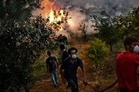 Villagers fight a wildfire in an orchard as nearly 80 large fires burned across Portugal in early August 2017. (Credit: Patricia de Melo Moreira/AFP/Getty Images) Click to Enlarge.