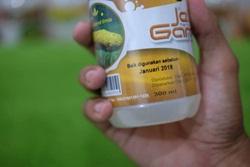 QnC Jelly Gamat Asli | AGEN RESMI | Harga Miring