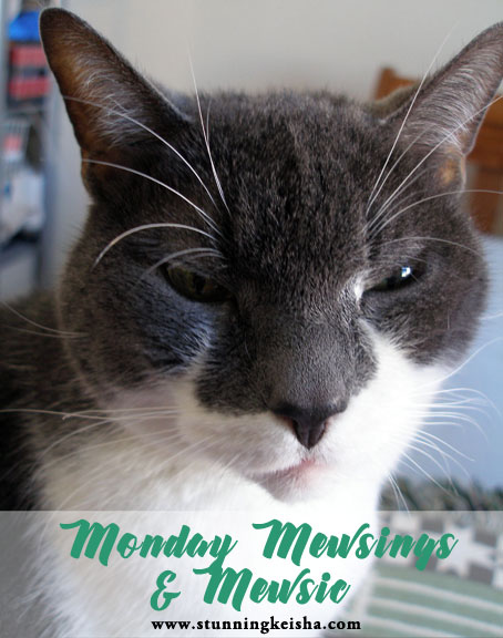 Monday Mewsings and Mewsic