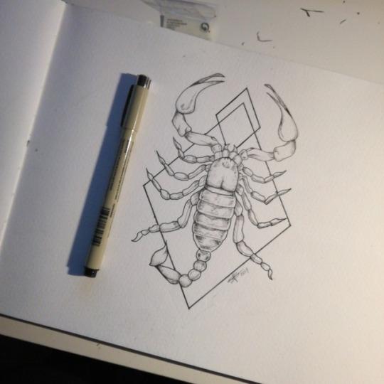 15 Amazing Scorpion Tattoos For Men & Women