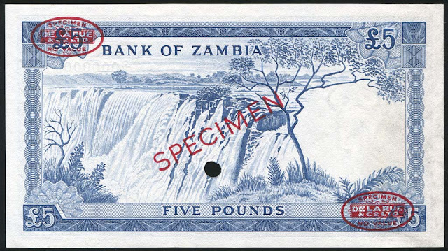 Zambian 5 pounds banknote money currency