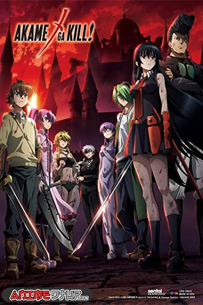 Akame ga Kill! (24/24) [Castellano/Ingles/Japones] [BDrip 1080p]