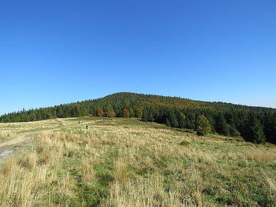 Okraglica z Przełęczy Kucałowej.