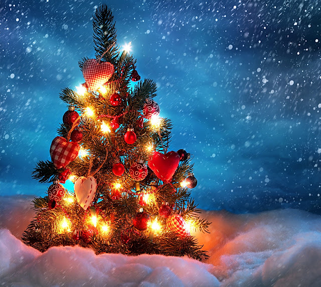 Christmas trees snow awesome wallpaper christmas tree pictures