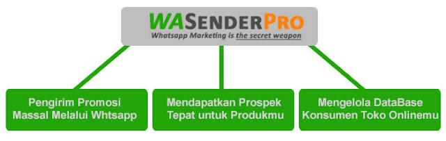 WASenderPro - Aplikasi Promosi Massal Melalui Whatsapp