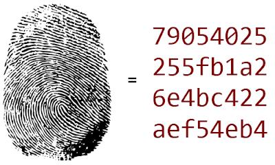 THE 330K | Cara Membuat MD5 Hash Decrypter Dengan PHP