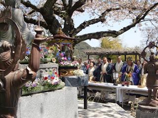 鎌倉:長谷寺の花まつり