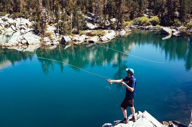 Rincian Biaya Modal Usaha Kolam Pemancingan Ikan hingga ...