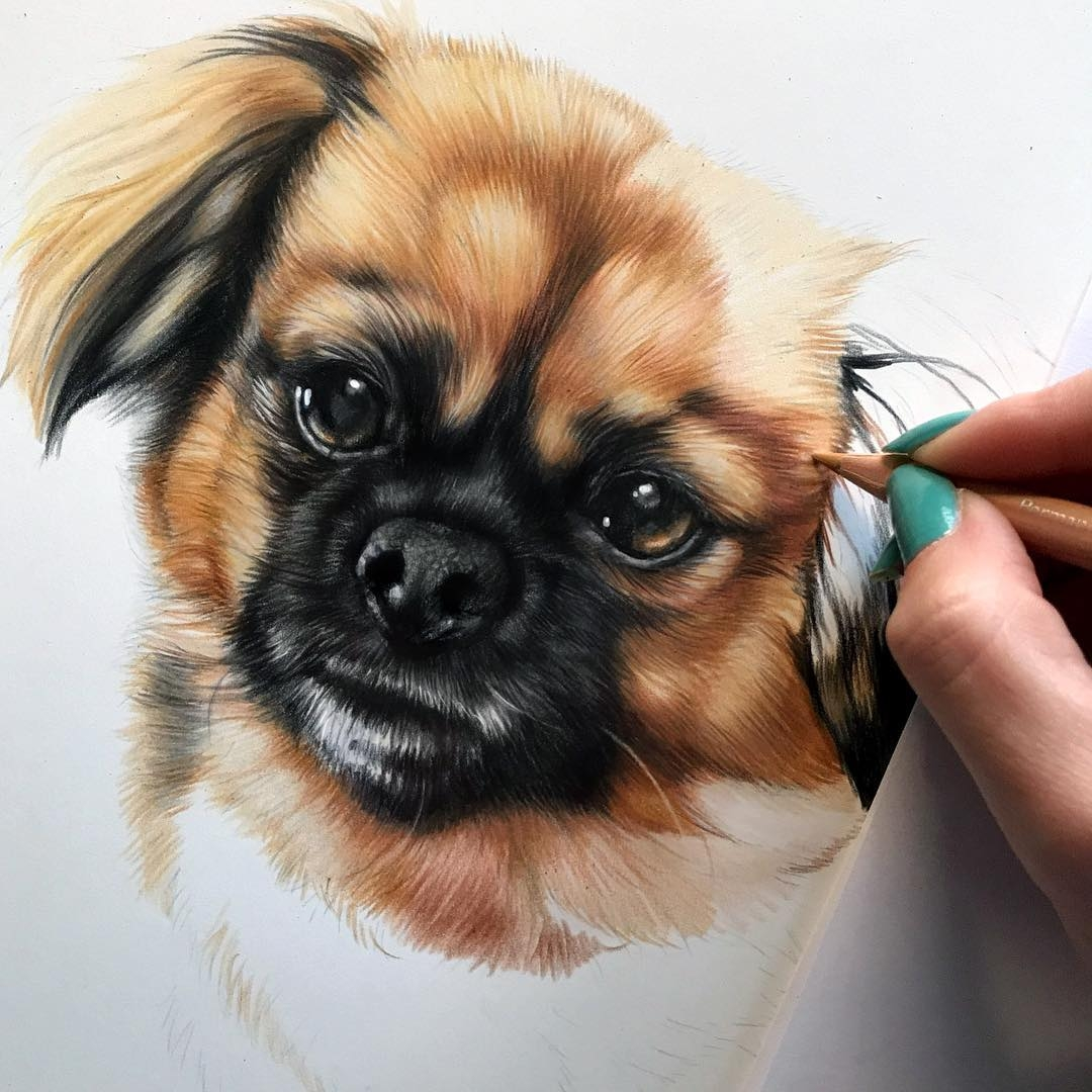 10-Piper-Kelly-Lahar-Realism-with-Animal-Portrait-Drawings-www-designstack-co
