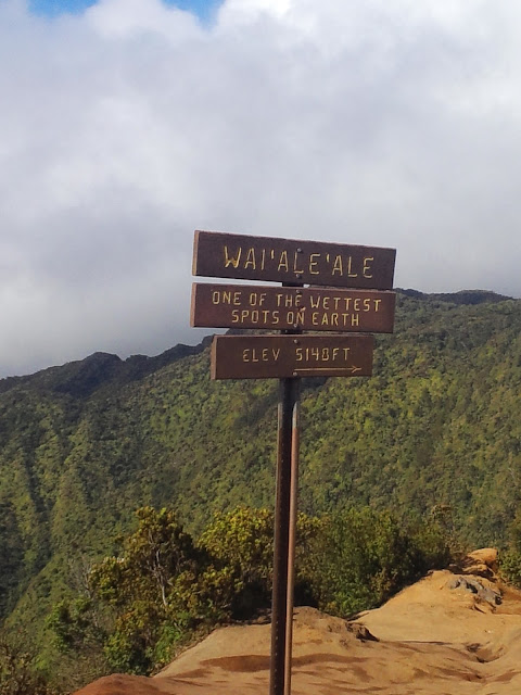 medleybyoanasinga.com-personal-blog-hawaii-vacation-kauai-island-10