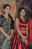 Pichuva Kaththi Tamil Movie Audio Launch Stills  0007.jpg