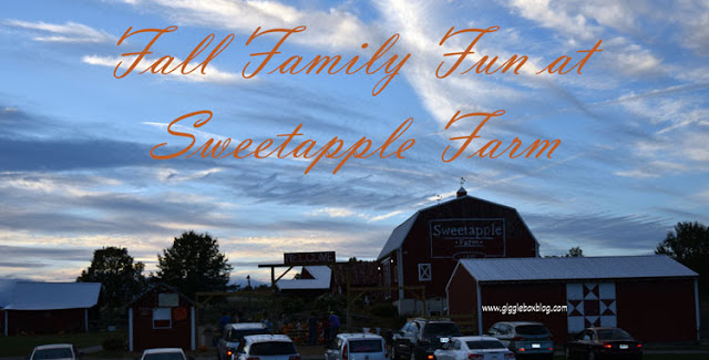 Fall family fun at Sweetapple Farm, Sweetapple Farm, Fall family fun in the Mid-Ohio Valley, pumpkin picking in the Mid-Ohio Valley, spooky hayride in the Mid-Ohio Valley, flashlight corn maze in the Mid-Ohio Valley, pumpkin picking, spooky hayride, hayride, flashlight corn maze, corn maze, fun in things to do in the Fall in the Mid-Ohio Valley with kids, Mid-Ohio Valley,