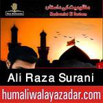 http://www.humaliwalayazadar.com/2015/10/ali-raza-surani-nohay-2016.html
