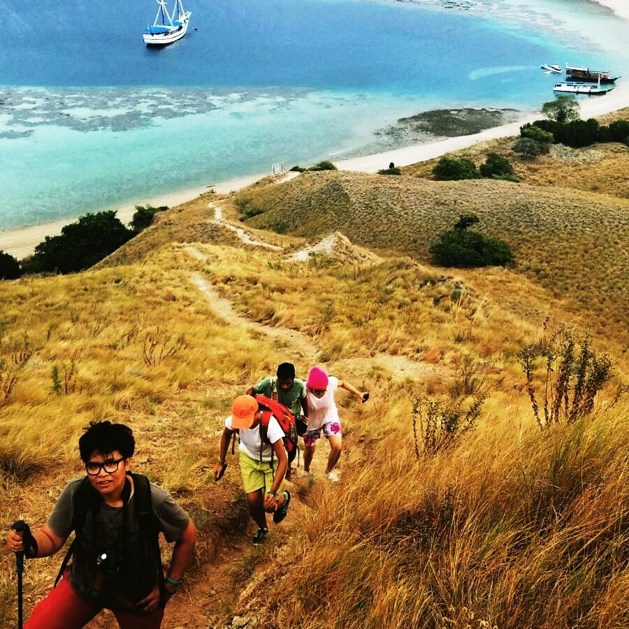 4 Hal yang Dapat dilakukan ketika Wisata ke Pulau Komodo di Nusa Tenggara Timur