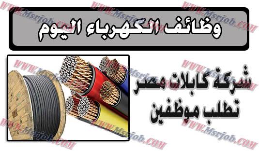 وظائف خالية ,وزارة الكهرباء ,شركة كابلات مصر ,جريدة الاهرام ,مشتريات ,شحن ,وظائف مصرية ,وظائف الحكومة المصرية .