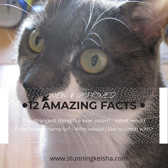 12 New & Improved Amazing Facts About CK