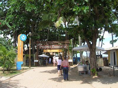 Proyecto Tamar, Praia do Forte, Brasil, La vuelta al mundo de Asun y Ricardo, round the world, mundoporlibre.com