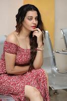 Diksha Panth in a Deep neck Short dress at Maya Mall pre release function ~ Celebrities Exclusive Galleries 023.JPG