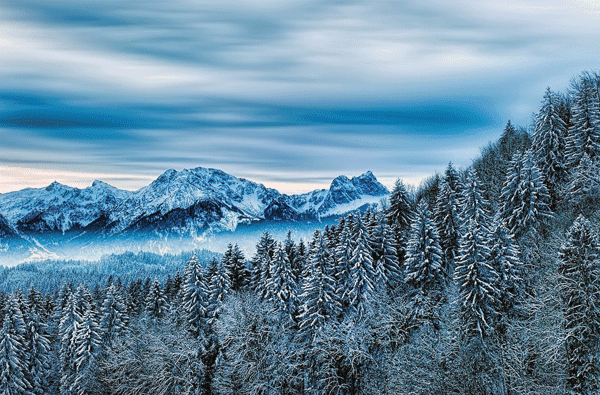 ketika memasuki musim dingin menjadi tempat kunjungan traveller