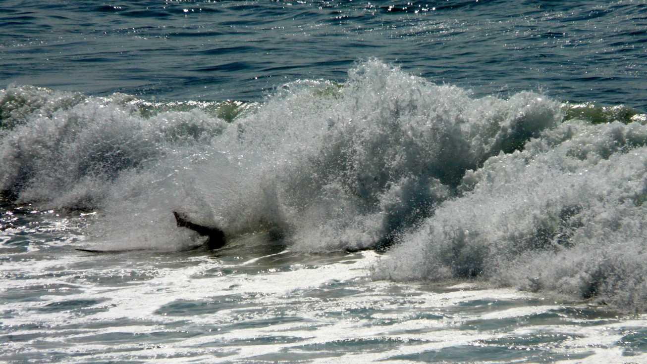 20150618 sopelana surf sesion 13