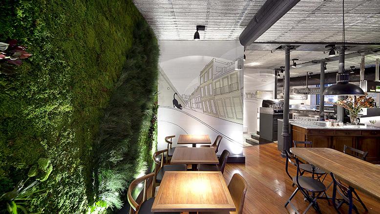 Verde subindo pelas paredes a tend ncial mundial dos - La musa latina madrid ...