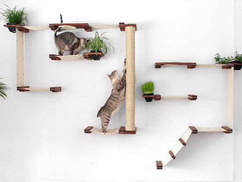 Sistemas modulares minimalistas convierten las paredes en patios de juego felinos