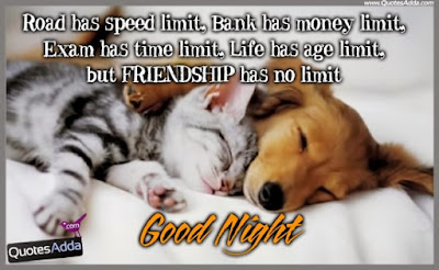 good night road has speed limit.