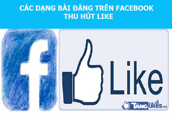 tang like facebook ca nhan