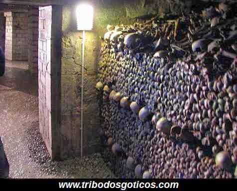 caveira,cemiterio,ossos,cranio