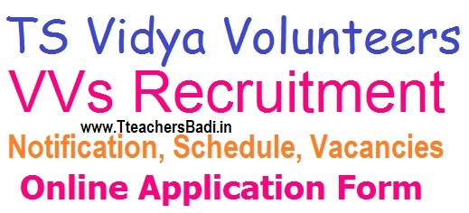 TS Vidya Volunteers Online Application form for 16781 District Vacancies Notification 2018