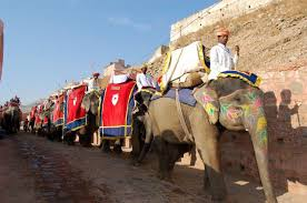 Amber Fort Jaipur Ride