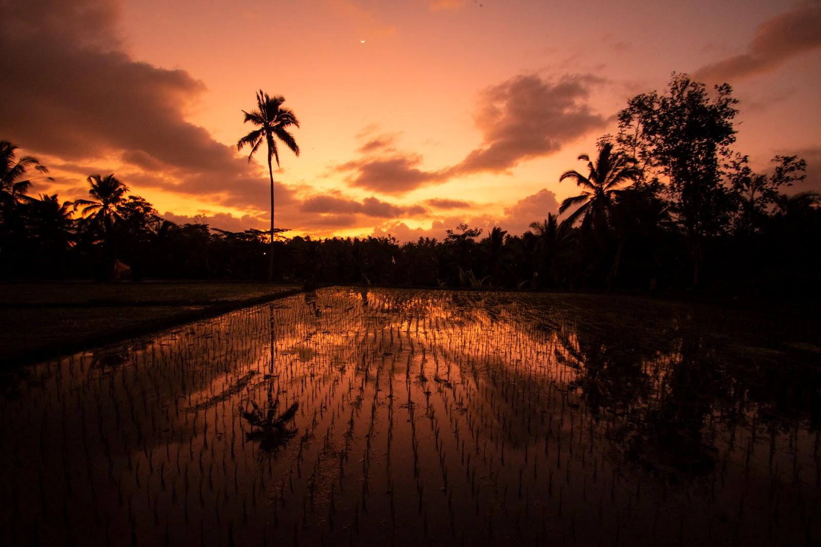Bali, diario di viaggio: terzo giorno