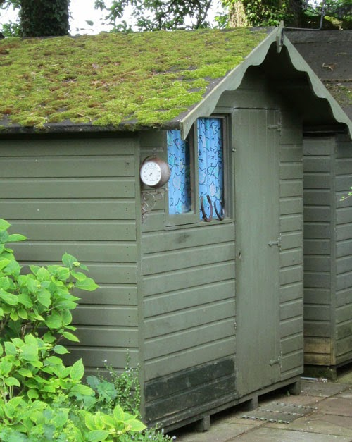 mossy shed roof
