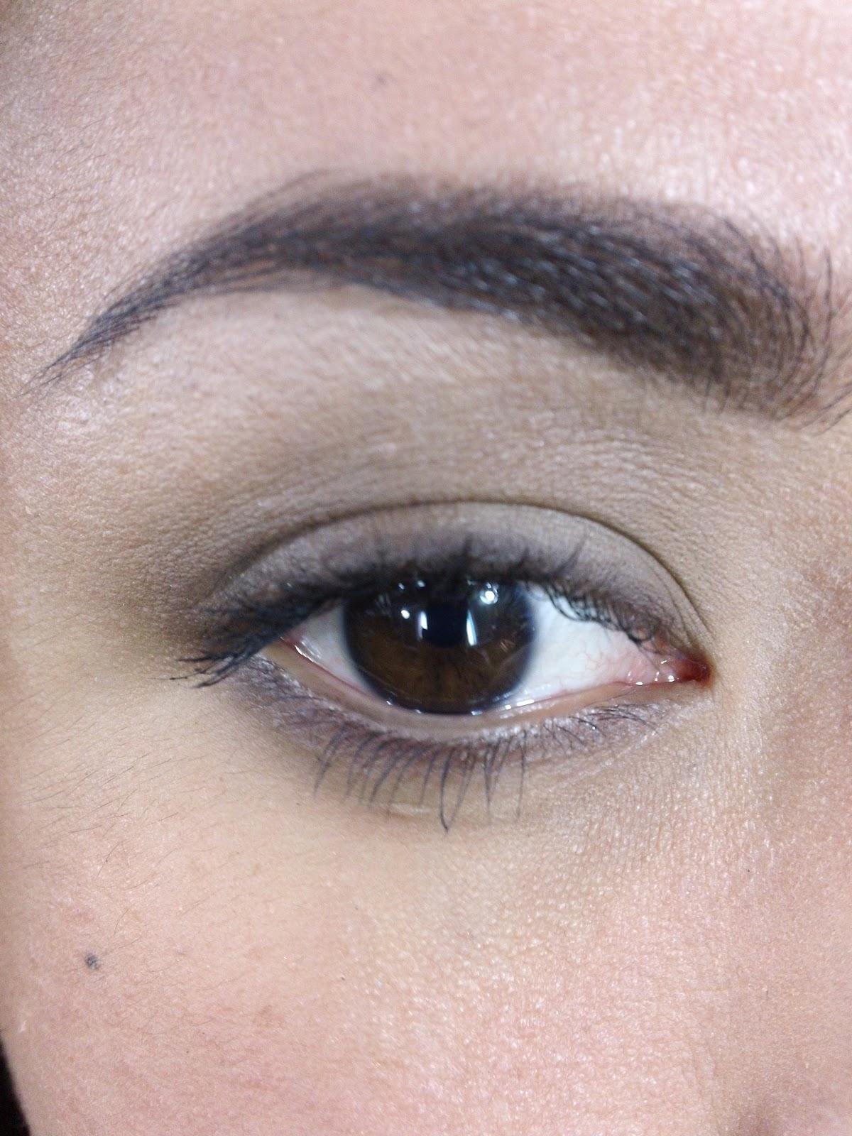Eye Dazzle's Beauty Blog: Easy BROWN Smoky Eye For Beginners