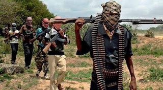 Alleged Boko Haram members kill 18 people in Nigeria