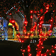 Decorate your home with a professional Christmas Light Installation