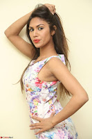 Nishi Ganda stunning cute in Flower Print short dress at Tick Tack Movie Press Meet March 2017 028.JPG
