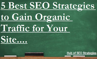Best SEO Strategies to Get Organic Traffic for your Site