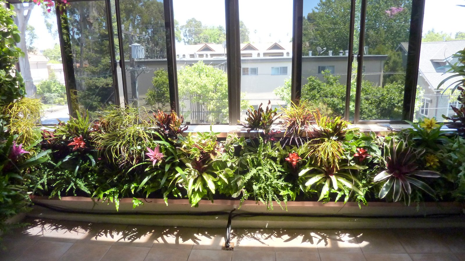 Plants On Walls vertical garden systems: Atrium Garden